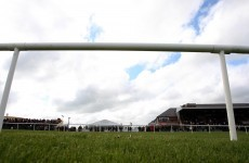 And they're off... Punchestown gets the go-ahead