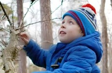 One third of children in Ireland have never climbed a tree