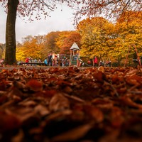 6 free, fun activities to check out this evening around Ireland