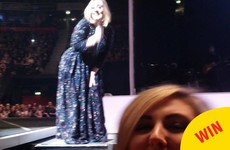 Adele excellently photobombed a fan taking a selfie at her gig