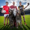 Irish wolfhounds, armed Volunteers and inter-county GAA stars gather in Croke Park