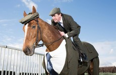 Tony McCoy's horse is the early contender for Cheltenham's best dressed prize