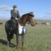 A horse in a three-piece suit is upping the style stakes ahead of Cheltenham