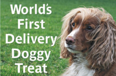 A Dublin takeaway has started doing delivery food for dogs