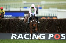 Mullins and Walsh dominate Cheltenham's opening day... again