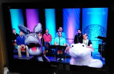 These two puppets presented Church service on RTÉ One this morning