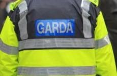 Gardaí investigate fire close to Priory Hall apartment complex