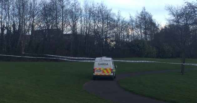 Bodies of man and his son found in stream in Dublin