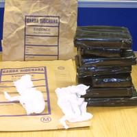 €500k worth of cocaine seized in garda raid at Dublin premises
