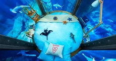 Sleep inside a shark tank for free in Airbnb's first underwater bedroom