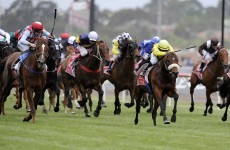 WATCH: Dunaden wins Melbourne Cup thriller by a nose