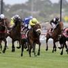 WATCH: Dunaden wins Melbourne Cup thriller by a nose