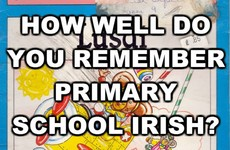 How Well Do You Remember Primary School Irish?