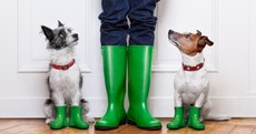 After a sunny week it's all rain and spot flooding for the weekend