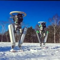 Think Google's robots are weird? You ain't seen nothing yet