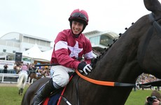 Cue Card and Don Cossack head impressive field for Punchestown Gold Cup