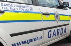 Garda awarded €20,000 after breaking big toe and losing thumbnail wrestling violent prisoner