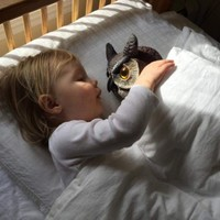 This little girl's friendship with a plastic lawn owl has delighted the internet