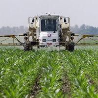 Should we be worried that this controversial weedkiller will be used for seven more years?