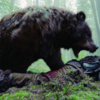 Revenant bear's cameo and bizarre teenage tantrum, it's your comments of the week