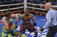 VIDEO: Patrick Hyland's world title dream ends with second-round knock out
