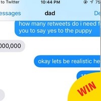 This girl finally got a new puppy after winning a Twitter bet with her dad