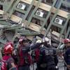 Desperate search for survivors as Ecuador earthquake death toll passes 400