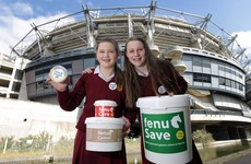 The two Irish teenagers selling supplements for Middle Eastern racing camels