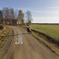 This Google street view gem involving a horse has just been discovered