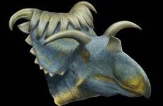 15-horned dinosaur discovered in Utah