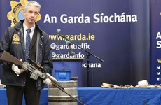 Should all gardaí be armed? The nation's split on the question