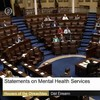 FactCheck: Did only 10 TDs really show up to debate mental health last night?