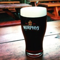 Murphy's is the most underrated pint in Ireland and needs to be celebrated