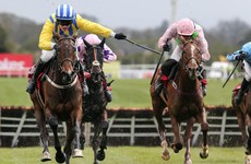 Willie Mullins' Whiteout stuns much-fancied stablemate at Punchestown