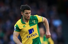 Controversial Wes Hoolahan substitution and more Premier League talking points