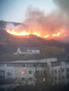 Multiple units of Dublin Fire Brigade tackling gorse blaze on Three Rock