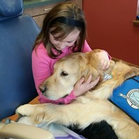 13 adorable pictures of the JoJo the 'dog nurse' who helps calm nervous children