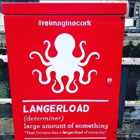 These spray-painted definitions of Cork slang words have popped up all over the city