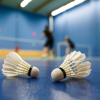 Irish badminton player ordered to pay €30k for assaulting and defaming woman