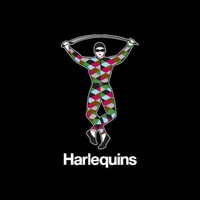 Harlequins 'deeply saddened' by death of 20-year-old front row Adeniran-Olule