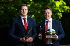 Stander makes a little bit of Munster history with second Player of the Year award