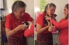 These students surprised their teacher with two kittens after finding out her cat had died
