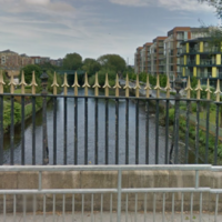 Young teenage boy drowns in Liffey accident