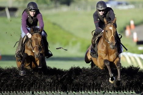 Nichols Canyon, left, and Shaneshill work on the Tennessee gallops this week.