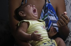 WHO: Zika virus likely to hit Europe this summer