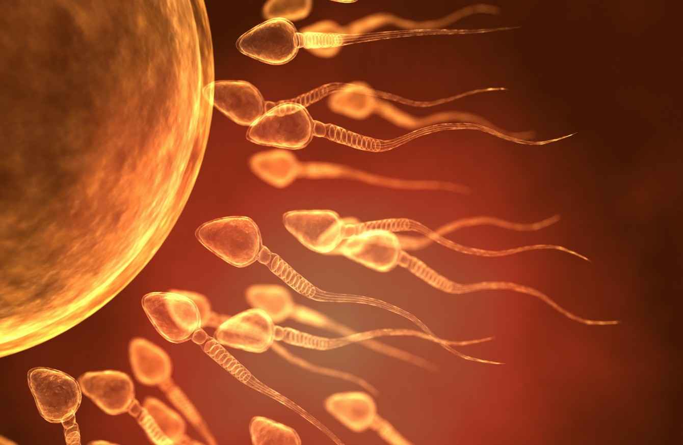 sperm-only-coming-from-one-testicle