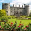 For when Bloom ends, here are 11 of Ireland's permanent gardens and parks to check out