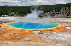 Man feared dead after falling into Yellowstone hot spring