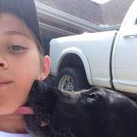 This little boy was caught secretly hugging his neighbour's dog after his own passed away