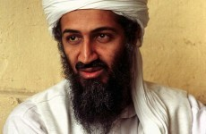Osama bin Laden was 'tender, gentle family man', says successor